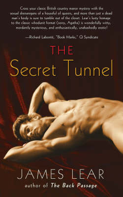 The Secret Tunnel (Mitch Mitchell #2)