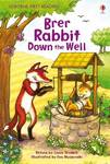 Brer Rabbit Down the Well (Usborne First Reading Level 2)