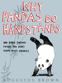 Why Do Pandas Do Handstands and Other Curious Truths About Animals