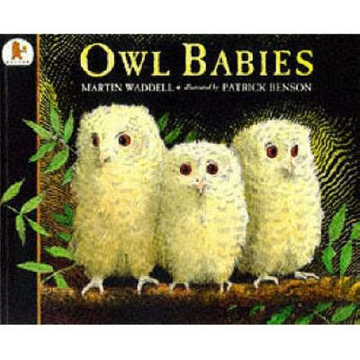 Owl Babies (Big Book)