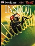 Insect: DK Eyewitness Guides