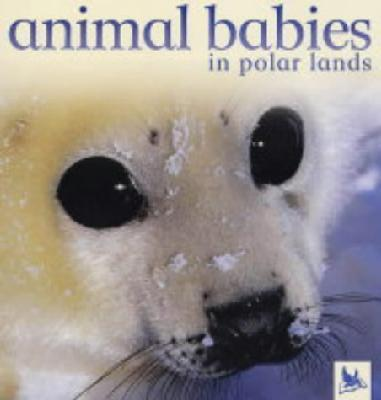 Animal Babies: Polar Lands