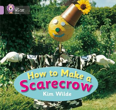 How To Make a Scarecrow (Big Cat Lilac)