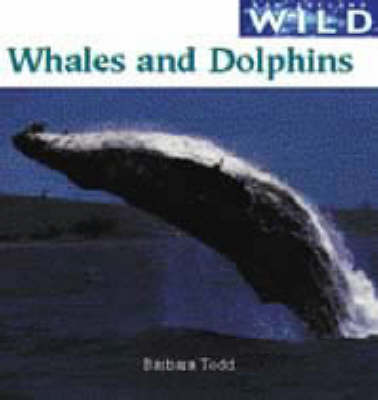 Whales and Dolphins (New Zealand Wild)