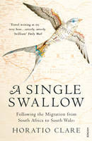 A Single Swallow : Following an Epic Journey from South Africa to South Wales