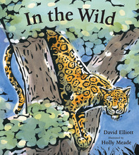Homepage_in_the_wild_cover