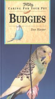 Caring for Your Pet Budgies