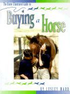 Illustrated Guide to Buying a Horse