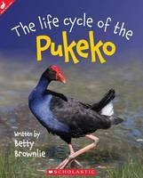 The Life Cycle of the Pukeko