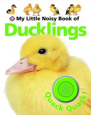 Ducklings - My Little Noisy Book