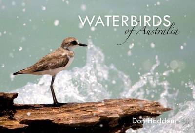 Waterbirds of Australia