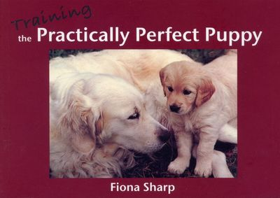 Large training the practically perfect puppy