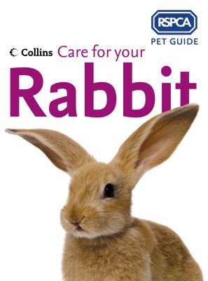 Care for Your Rabbit (RSPCA Pet Guide)