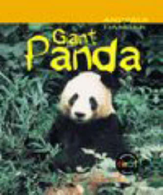 Animals in Danger: Giant Panda