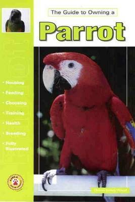 Guide to Owning a Parrot