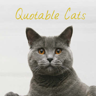 Quotable Cats