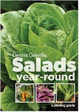 Salads Year-round: A Planting Guide