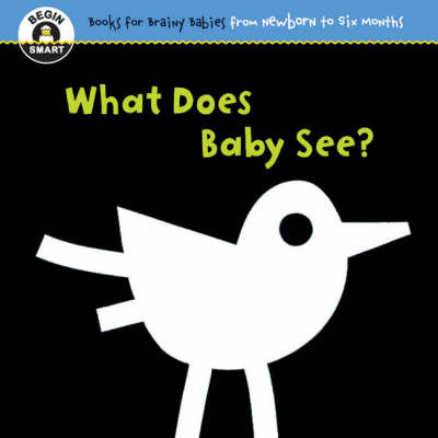 Begin Smart - What Does Baby See