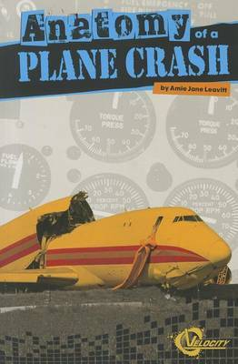 Anatomy of a Plane Crash (Disasters)