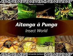 Aitanga a Punga /Insect World (Maori First Word Books)