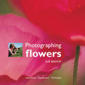 Photographing Flowers: Inspiration, Equipment, Technique