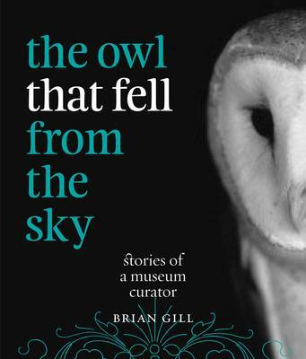The Owl That Fell From the Sky: Stories of a Museum Curator