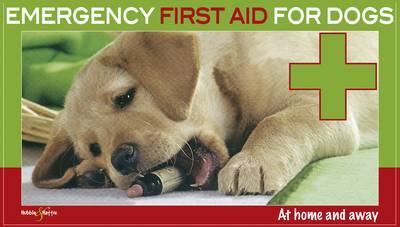 Emergency First Aid for Dogs: At Home and Away