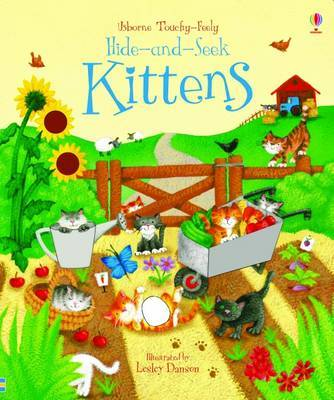Hide and Seek Kittens (Usborne Touchy Feely)