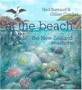 At the Beach: Explore & Discover the New Zealand Seashore (HB)