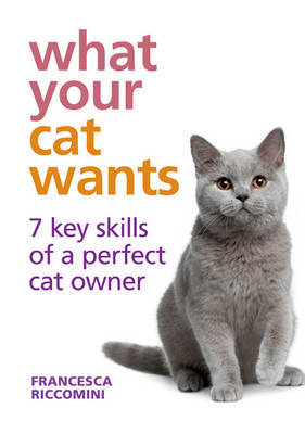 What Your Cat Wants: 7 Key Skills of a Perfect Cat Owner