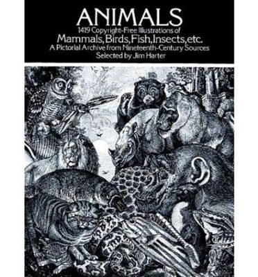 Animals 1914 - copyright free illustrations