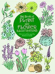 The Big Book of Plant and Flower Illustrations
