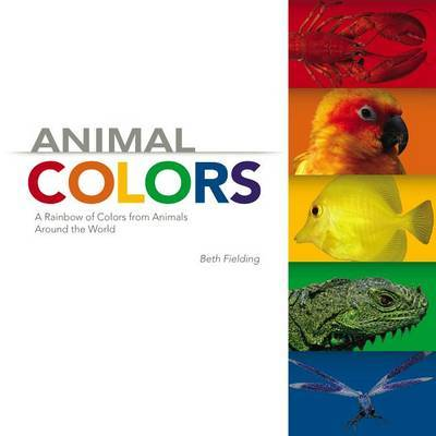 Animal Colors: A Rainbow of Colors from Animals Around the World