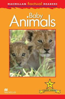 Macmillan Factual Readers Level 1+: Baby Animals