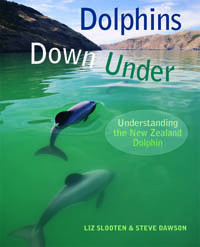 Dolphins Down Under: Understanding the New Zealand Dolphin