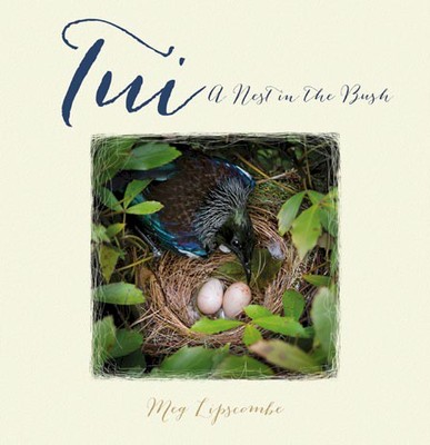 Tui: A Nest in the Bush