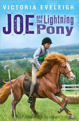 Joe and the Lightning Pony: A Boy and His Horses