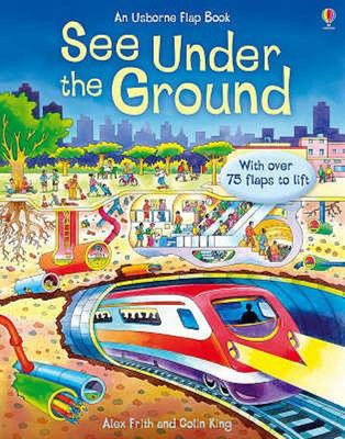 See Under the Ground (Usborne Lift-the-Flap Board Book)