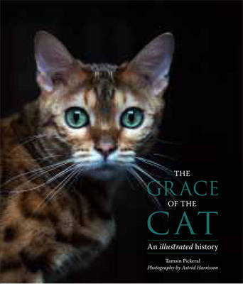 The Grace of the Cat: An Illustrated History