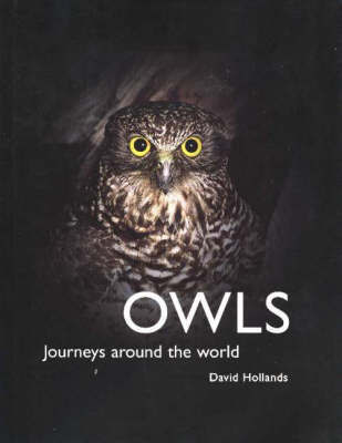 Owls: Journeys Around the World
