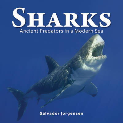 Sharks: Ancient Predators in a Modern Sea (HB)