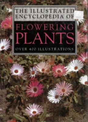 AN ILLUSTRATED ENCYCLOPEDIA OF FLOWERING PLANTS