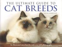 Homepage_cat-breeds-ultimate-guide