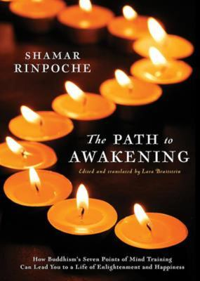 Path to Awakening