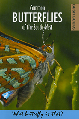 COMMON BUTTERFLIES OF THE SOUTH WEST