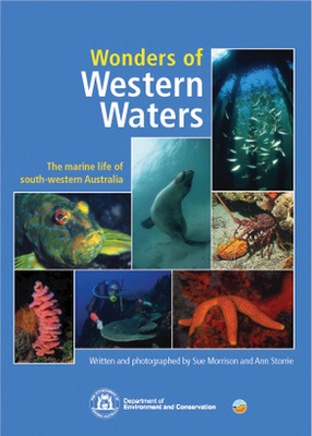 Wonders of Western Waters and the Marine Life of South Western Australia: The Marine Life of South Western Australia