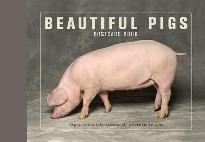 Beautiful Pigs Postcard Books: 30 Postcards of Champion Breeds to Keep or Send