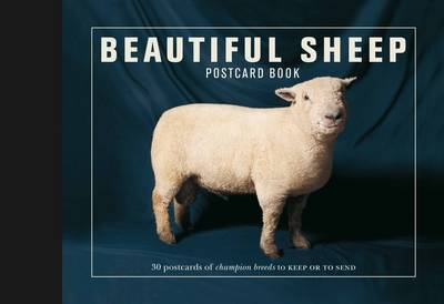 Beautiful Sheep Postcard Book: 30 Postcards of Champion Breeds to Keep or to Send