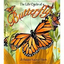 The Life Cycle of a Butterfly (Life Cycle Series)