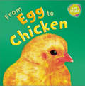 From Egg to Chicken (Lifecycles)